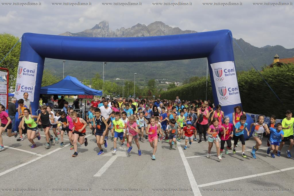 Sedico_run_2018 - sedico run 2018 - partenza family run.jpg